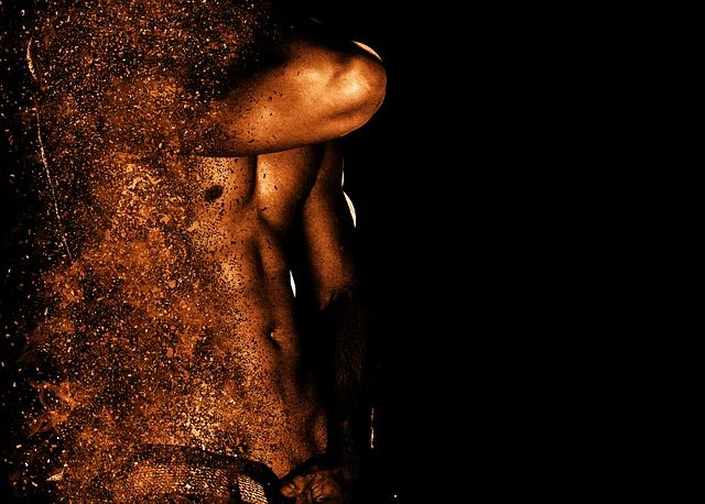 筋肉の分解と合成