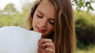 カロリー密度の低い綿菓子