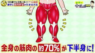 下半身の筋肉量は約70%