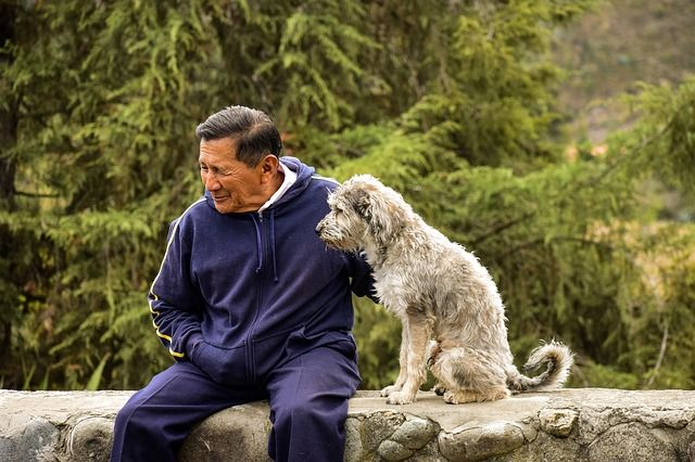 老化、おじさんと犬